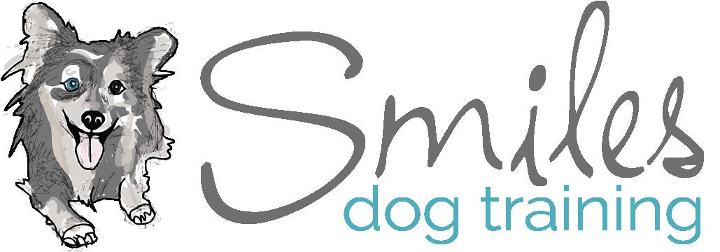 SmilesUpdated Logo (2)